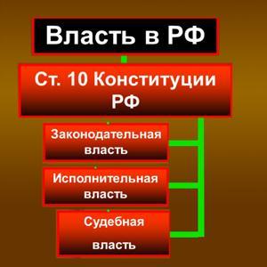 Органы власти Павловской